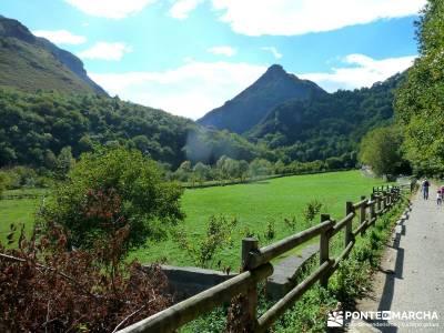 Hayedos Parque Natural de Redes;guias de senderismo amigos del senderismo trekking y senderismo
